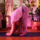 Yin Yoga Zürich | thegoldendrop.me